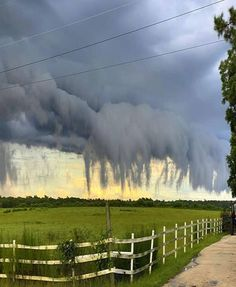 These are called Scud clouds. This was recently captured in South Carolina. photographer by 📸 Zachary Lane Natural Phenomena, Natural Disasters, Rauch Fotografie, Cool Photos, Beautiful Pictures, Hidden Places, Ohana, Amazing Nature, Beautiful World