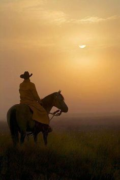 """""""Horses and life, it's all the same to me."""" ~Buck Brannaman, the real life horse whisper"""