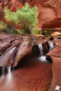 """Coyote Falls"" – Escalante National Monument, Utah"