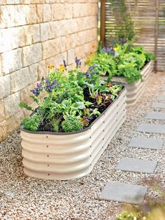 A stylish step up from popular galvanized trough planters, this eye-catching raised bed is made from extremely durable Aluzinc steel. Sets up in nine shapes. Raised Flower Beds, Raised Garden Beds, Small Garden Patios, Indoor Garden, Stone Raised Beds, Small Garden Landscape, Small Front Gardens, Raised Patio, Rain Garden