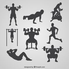 Learn how you can monetize your physical abilities as a body builder