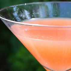 A Citrus Sunny Cocktail--to brighten your day any day of the year! Refreshing Drinks, Fun Drinks, Alcoholic Drinks, Beverages, Summer Cocktails, Cocktail Drinks, Incredible Edibles, Grapefruit Juice, Looks Yummy