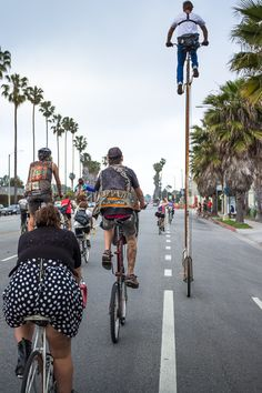 StoopidTall, the Tallest Bicycle in Los Angeles by Richie Trimble.