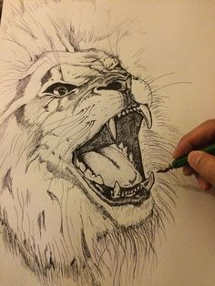 Lion drawing ink