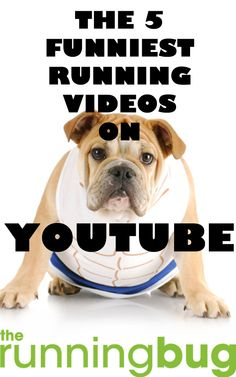 From aggressive athletes to weird and wacky running styles. These are the 5 funniest running videos on YouTube: http://therunningbug.co.uk/training/motivation/b/weblog/archive/2014/11/05/the-6funniest-running-videos-on-youtube.aspx?utm_source=Pinterest&utm_medium=Pinterest%20Post&utm_campaign=ad THERUNNINGBUG.CO.UK #therunningbug #running #funny #humour