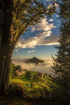 Península de Otago, Nova Zelândia