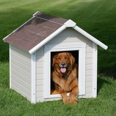 (This is an affiliate pin) Precision Pet Products Pro Concepts Country Club Estate Luxury Dog Home, Large Wood Dog House, Large Dog House, Build A Dog House, Dog House Plans, Farm House, Luxury Dog House, Grande Niche, Insulated Dog House, Custom Dog Houses