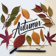 Autumn colours #type