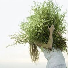 greenery-wedding-decor - Once Wed Wild Flowers, Beautiful Flowers, Meadow Flowers, Belle Plante, Meadow Garden, Queen Annes Lace, Spring Green, Along The Way, Planting Flowers