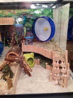 Super cute hamster environment. Lots of neat DIY ideas!
