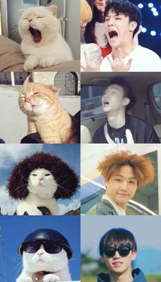 Check out the post right here for perfect Game of Thrones memes. These beautiful memes will brighten up your day. Meme Got7, Got7 Funny, Jaebum Got7, Got7 Yugyeom, Got7 Jb, Mark Jackson, Got7 Jackson, K Pop, Kdrama Memes