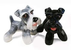 Schnauzer Handmade Salt and Pepper Shaker (5cm x 8cm) by Blue Witch. $48.00. Genuine Blue Witch Ceramic Product. Product Dimensions : 5cm x 8cm. Salt and Pepper Pair. Individually handmade and hand painted. The Schnauzer, featured here on this Blue Witch cruet set, has its roots in the old guarding and herding breeds of Europe. Beautifully hand painted, this set brings to life the Schnauzer's distinctive look, with its compact, square build and bearded hair.