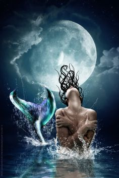 *•.. Mermaid and the Moon ..•*