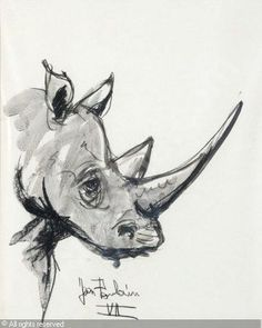 Poulain Rhinoceros