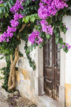 Bougainvillea Draped Doorway in Obidos, Portugal by John Pinnock on 500px