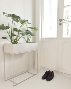 ferm LIVING Plant Box: perfect for a slim area for adding foliage, storage or dividing space. hey are so popular. Plant Box, Scandinavian Interior, Plant Decor, Decoration, Home Furniture, Home Accessories, Terracotta, Sweet Home, Interior Decorating