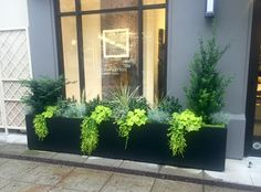 gorgeous 35 Superb Window Box Planters Ideas That Will Inspire You Front Yard Planters, Balcony Planters, Window Planter Boxes, Outdoor Planters, Outdoor Gardens, Rectangular Planters, Large Planters, Colonial Exterior, Stucco Exterior