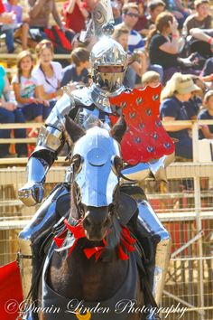 Toby Capwell wearing his team shield at Tournament of the Phoenix 2014 (photo by Dwain Linden) The Jousting Life