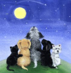 """Dogs & Cat """" Watching the Sky"""" by Sue Barratt"""