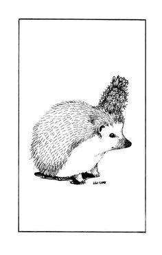 Hedgehog Art Drawing  Giclee Print  Cactus Hat by StupidAnimalShop