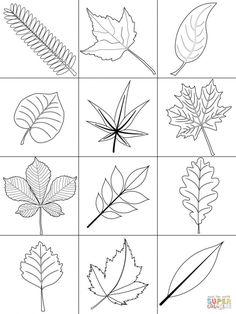 Leaf Coloring Pages Art center Leaf coloring page