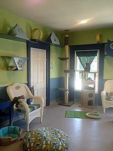 cat house decor