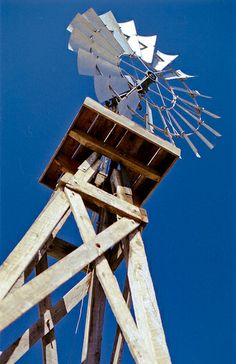 Wind Mill Tower - Echo Park, California – 35mm Film