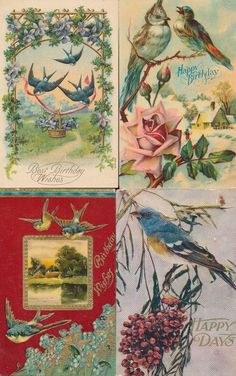 Pretty Lot of 4 Greetings Postcards all with Beautiful ~Birds~Vintage- ~ttt303