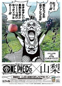 One Piece 山梨:イワンコフ