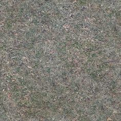 Zero CC tileable dry grass texture photographed and made by me CC0