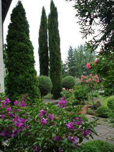 bella italia - Bilder und Fotos