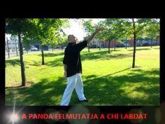 Chikung gyakorlatsor 14 meridián 1_4-ig Qigong, Tai Chi, Tao, Health, Youtube, Health Care, Youtubers, Youtube Movies, Salud