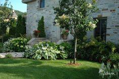 Aménagement paysager - Innovations Paysagées Ladouceur | Drummondville Plants, Landscape Fabric, Landscape Planner, Patio, Plant, Planets
