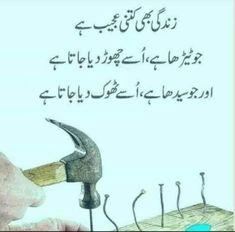 Urdu Quotes, Quotations, Deep Thoughts, Prayers, Language, Gems, Treats, Queen, Nice
