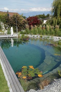 Natürliches Baden in einem Schwimmteich! Best Picture For inground pool ideas For Your Taste You are looking for something, and it is going to tell Pool Spa, Natural Swimming Ponds, Natural Pond, Swimming Pools Backyard, Ponds Backyard, Backyard Landscaping, Dream Pools, Cool Pools, Pool Houses