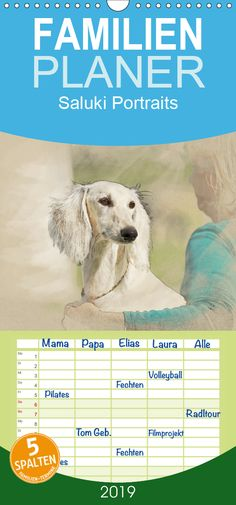 Portraits of sighthounds | Salukis for calendar | Dogs, Dog