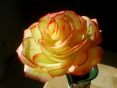 Coffee Filter Flower | cre8time.org