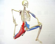 Stretch oefeningen voor de psoas - RxGUIDE Premium CrossFit training