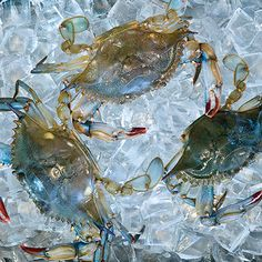 Soft-shell crab -Tips, tricks, and recipes for making the most of a seasonal delicacy