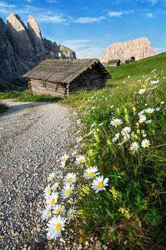 Spring in Dolomiten - Italy
