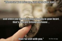 I'm still with you...