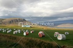 Painted bales of hay by Claudia Fernandes - Foto Stock