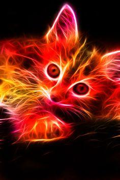 Fractal Kitten by minimoo64.deviantart.com on @deviantART    So pretty!