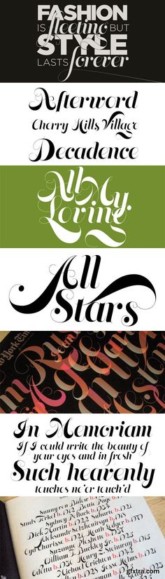 Memoriam Font Family - 4 Fonts for $50