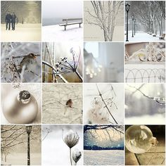 All is calm, all is bright ... | 1. Snowy walks, 2. English … | Flickr