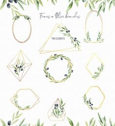 Olive greenery clipart with gold frames - olive clipart png, greenery wreath, Leaves clipart, watercolor leaves. Olive Tattoo, Olive Branch Tattoo, Watercolor Leaves, Floral Watercolor, Arm Tattoo, Leaf Tattoos, Tattoo Ribs, Flower Bouquet Png, Olive Wreath