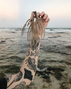Healed sea sleeve with her salty muse and washed up coral on my - lionfish, spotted eagle ray, narwhal seen - would love to… Whale Shark Tattoo, Whale Tattoos, Body Art Tattoos, Cool Tattoos, Shark Tooth Tattoo, Narwhal Tattoo, Hammerhead Shark Tattoo, Sea Tattoo Sleeve, Ocean Life Tattoos