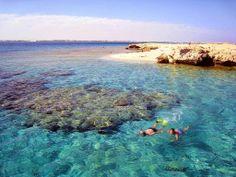 Dante Alighieri ? Oggi sarebbe un blogger: Vacanze tra le meraviglie del Mar Rosso