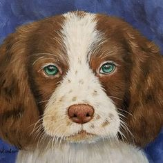 DOG Painting Tutorial by Angela Anderson #acrylicpaint #yearofthedog #englishspringerspaniel #youtuber