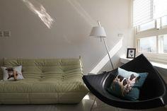Sofa, Couch, Homeland, Living Room, Interior, Modern, Home Decor, Settee, Settee